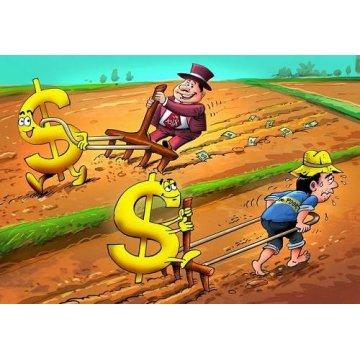 Khi bạn làm nghề seo thì giàu hay nghèo ?
